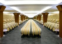 Museum of Wine Vivanco