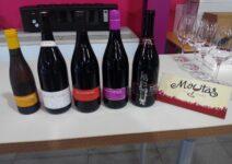 Microviña (Microvinya) и винодельня El Celler de la Muntanya