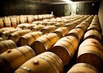 Castell d'Encus: vinos de altura