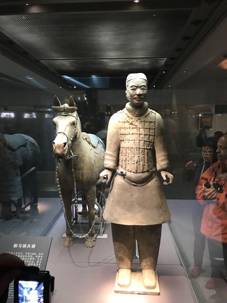 El MARQ expondrá la mayor exposición de Guerreros de Xi'an