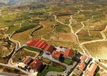 Bodegas Luis Cañas: siempre buscando los vinos perfectos