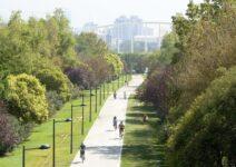 Los jardines del Turia: el corazón verde de Valencia