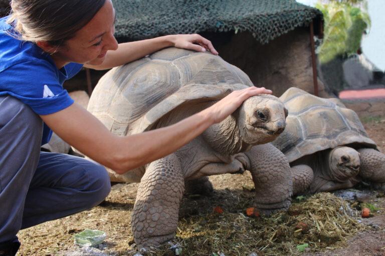 El Oceanogràfic alcanza la acreditación más exigente del mundo en cuidado animal