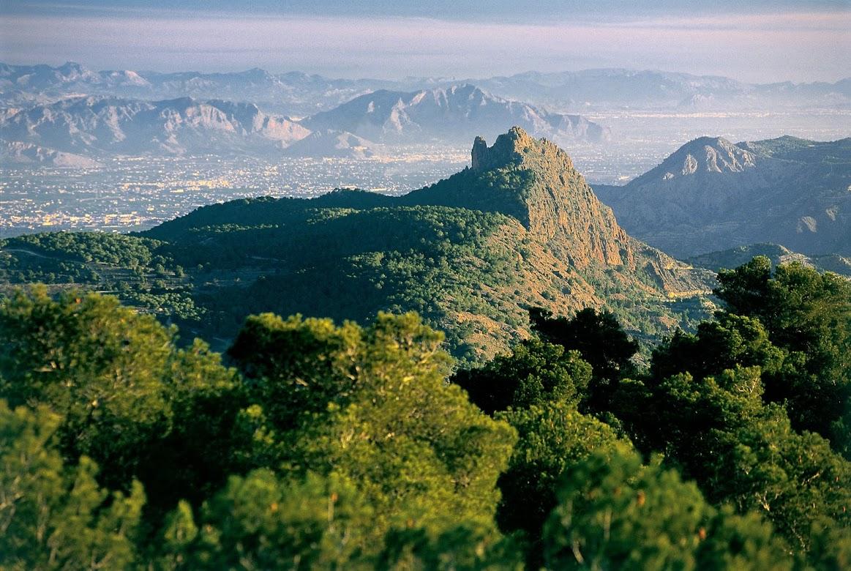 A Murcia se vuelve por su entorno